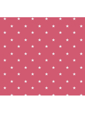 4643 Tejido Estrella (9)